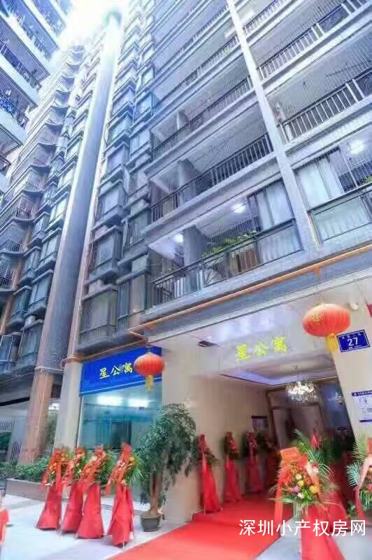 深圳龙华小产权房《伽乐园》民治地铁口500米 龙华村委统建楼