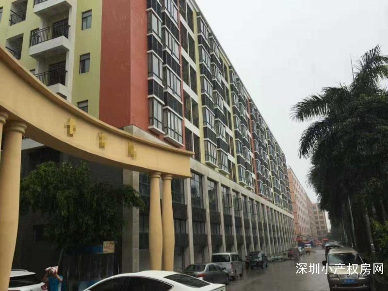 龙华观澜村委统建楼出售《富金苑》价格低至8500元/平,住家首选