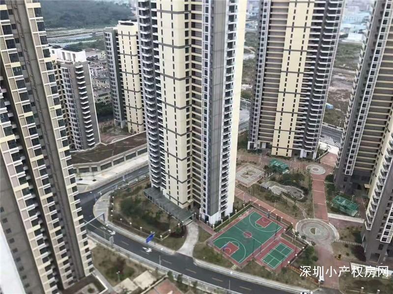 坪山回迁房《坪山国际》15栋大型花园楼[3-5年出红本房产证]是投资和住家之首选