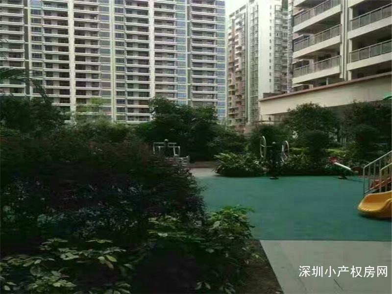 龙华绝版军产房上市《金苹果乐园》龙华清湖地铁口唯一军产房,全封闭式花园小区