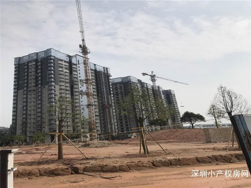 石岩高端小产权房《塘头花园》1500户大社区首批推出,品质高尚的住宅小区!