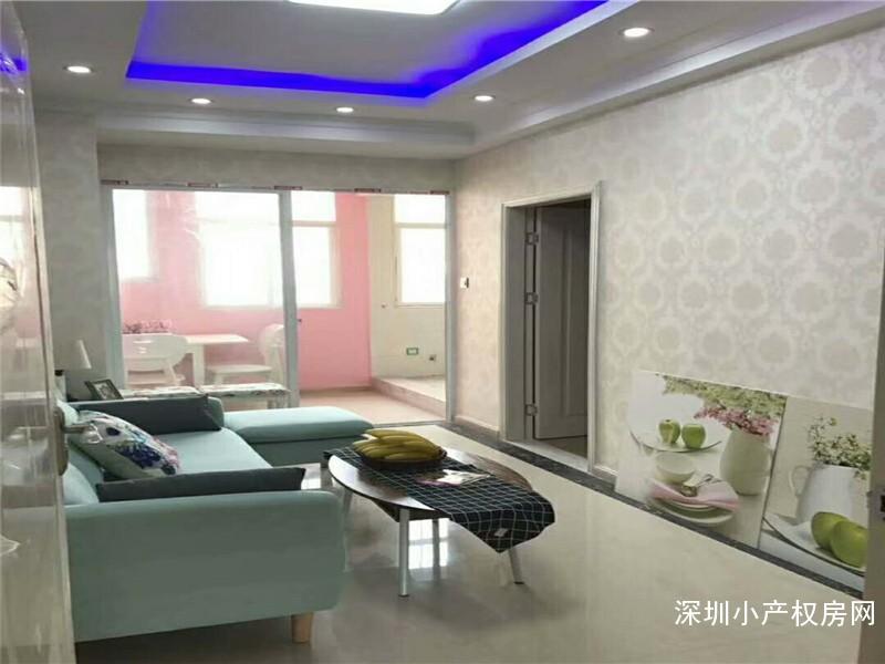 光明新区最新小产权房出售《甲子塘公寓》精致装修标准,住家最佳选择
