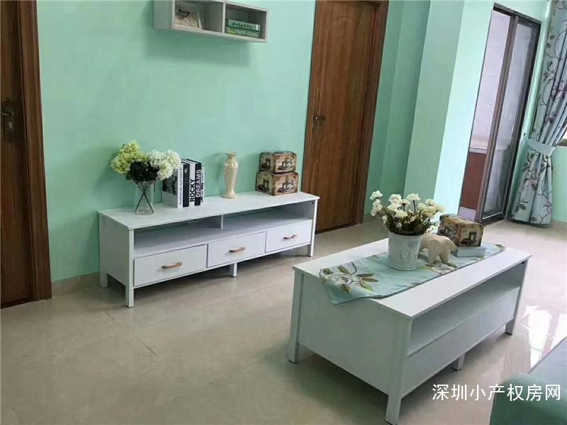 深圳龙华民治最新小产权房开盘信息《东湖公寓》投资自住性价比最高楼盘