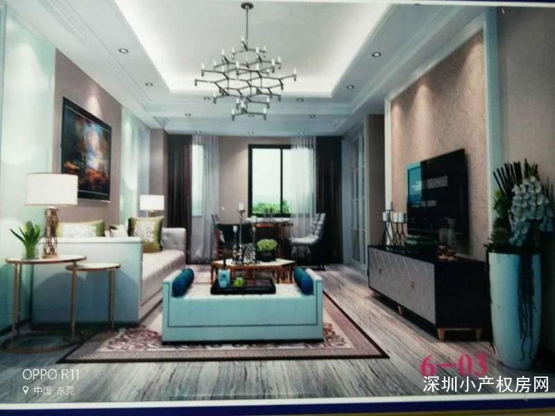 东莞厚街最新小产权房《幸福春天里》豪华装修,即买即住,投资首选