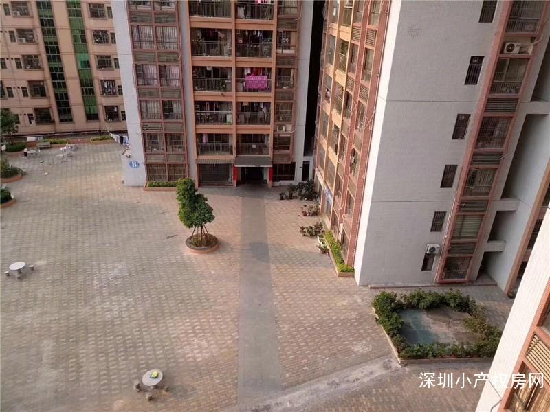 深圳石岩小产权房最高性价比楼盘消息,大型花园村委房《星湖名居》超低单价