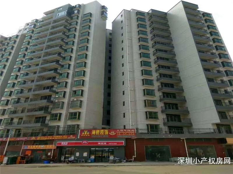 惠州-山水豪庭
