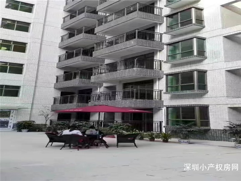 惠州小产权房出售-山水豪庭-大型村委统建楼自带空中花园