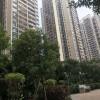 为什么深圳小产权房越买越贵?