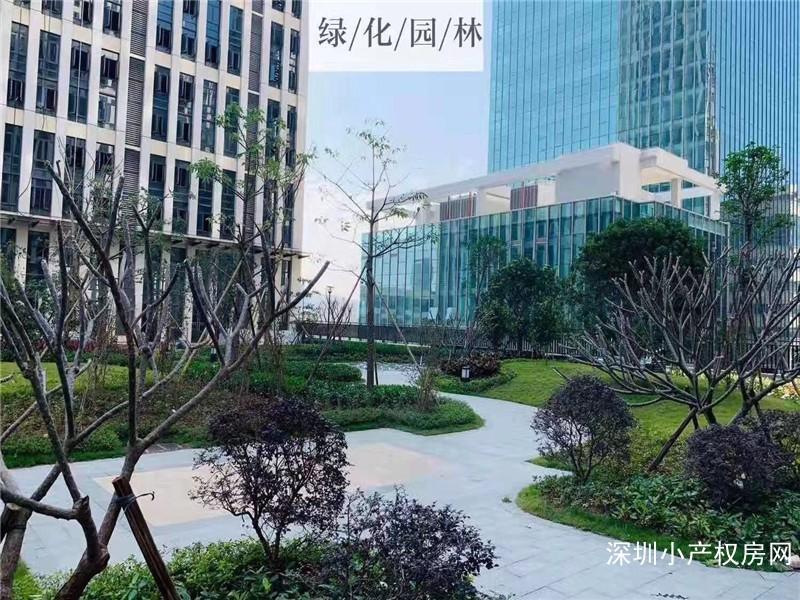 龙岗李朗花园小产权《君悦公馆》五栋花园小区,双地铁,双地下停车,买一层送一层