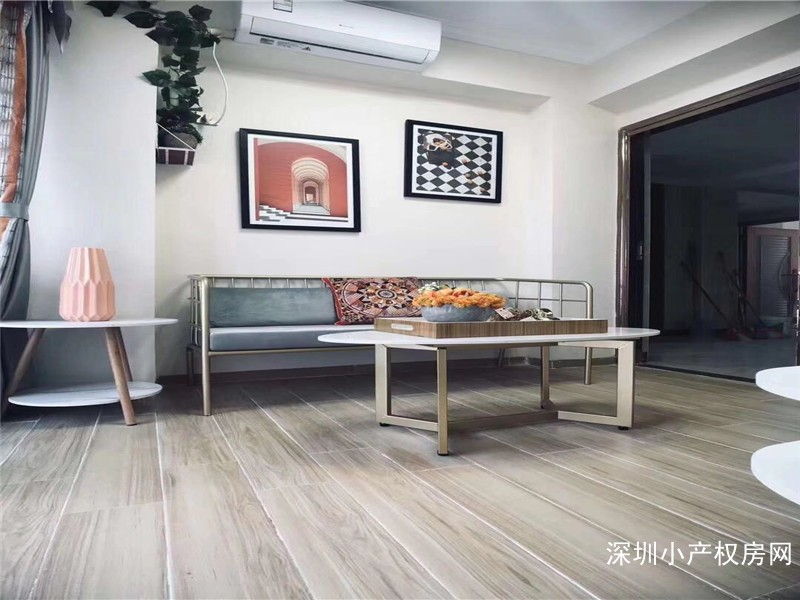 深圳龙华小产权房《共和小时代2》龙华最中心房,位置决定价值,发展无限
