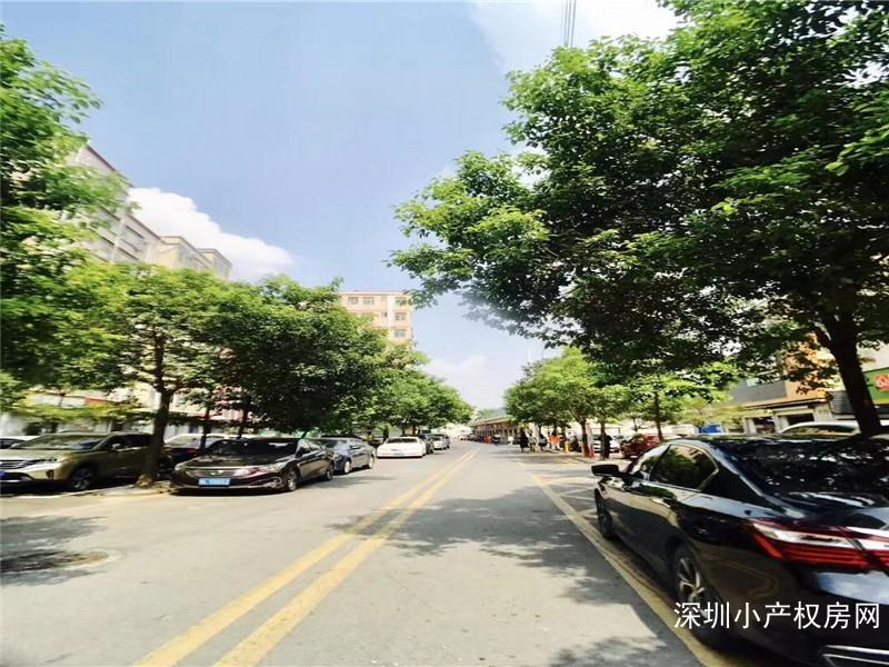 深圳小产权《白芒关豪苑》石岩在售小产权南山后花园,稀有物业来了