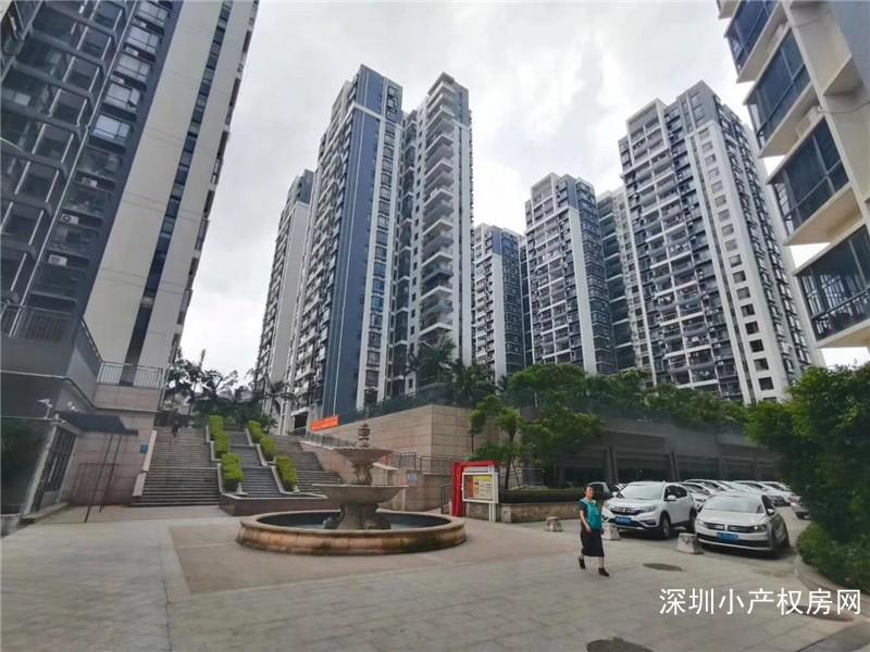 深圳龙华小产权房-龙华中心花园