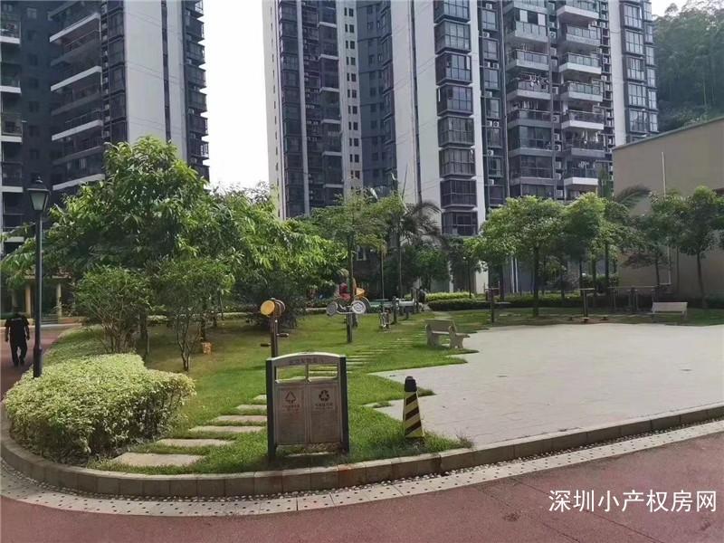 深圳龙华小产权《龙华中心花园》12栋军产权花园小区,宇宙中心龙胜地铁口最美房子