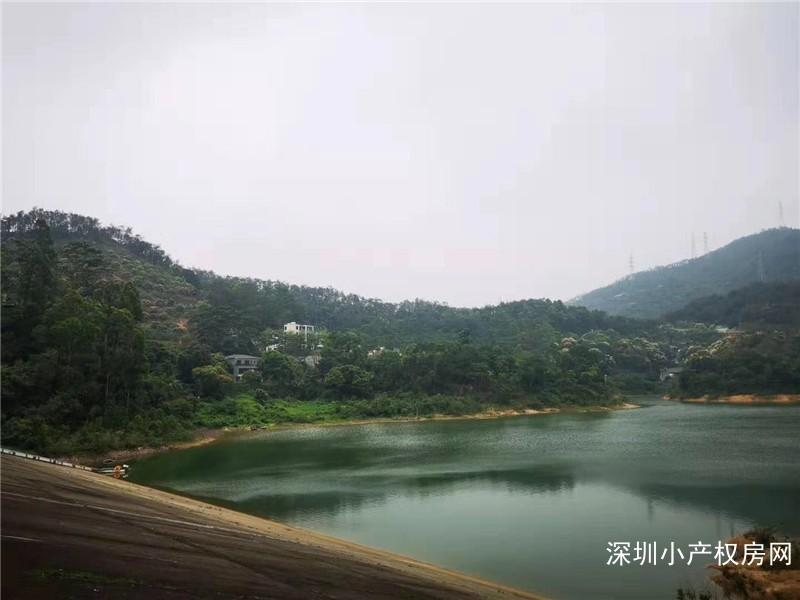 深圳龙华村委房《山水绿园》龙胜地铁口村委统建楼,非常漂亮的房子,一房至五房