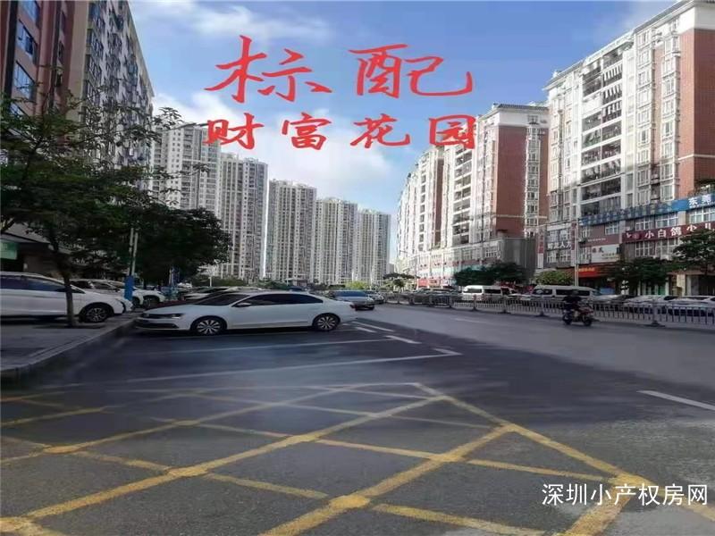 东莞凤岗小产权房-财富花园