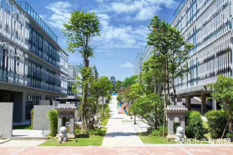 东莞大朗小产权房 凯风世纪广场 首付仅需一成买南城CBD华侨城旁物业